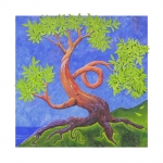 Dancing Arbutus Tree by the Ocean